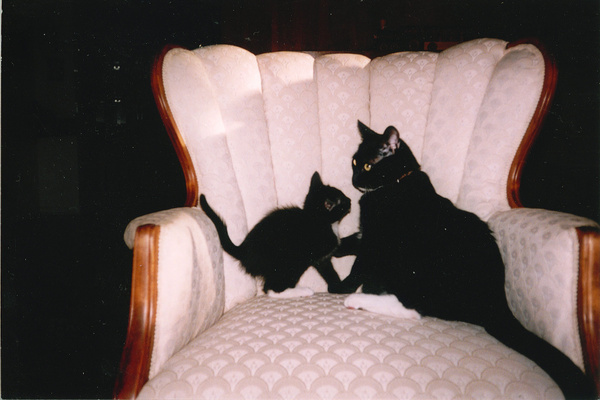 11-11-2005-08 by JoeODell