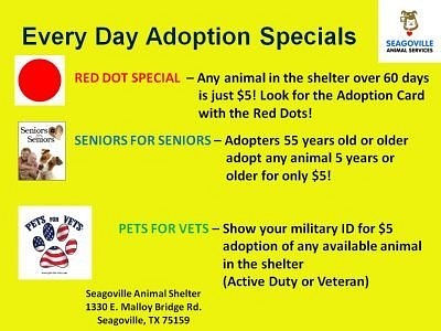 Every_Day_Adoption_Specials by SeagovilleAs