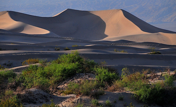 San Diego Natural History Museum - Death Valley - by DaveWyman
