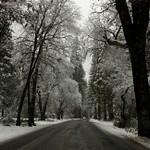 Yosemite in Winter - 2007