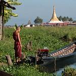 2011_12_Мьянма_Монахи озера Инле_08