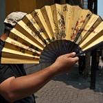 2011_06_Рынки Шанхая