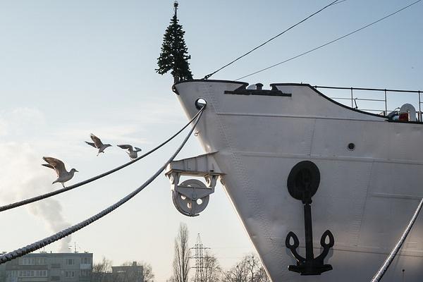 2012_12_Рожденный в СССР by Anatoly Strunin