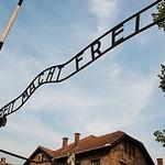 2014_01_Мой Освенцим_Эхо