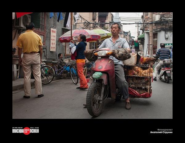2016_01_Фотовыставка 'Россия-Китай' - виртуальный тур by Anatoly Strunin