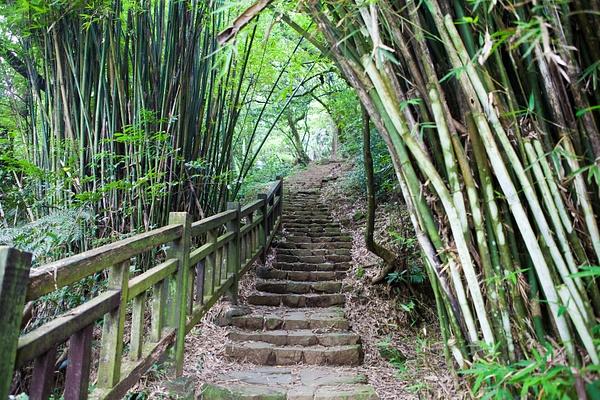 Yangmingshan Park, Taiwan by Eugene Osminkin