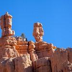 Red Canyon, USA
