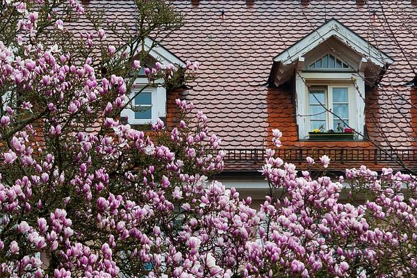 Baden Baden, Germany by Eugene Osminkin