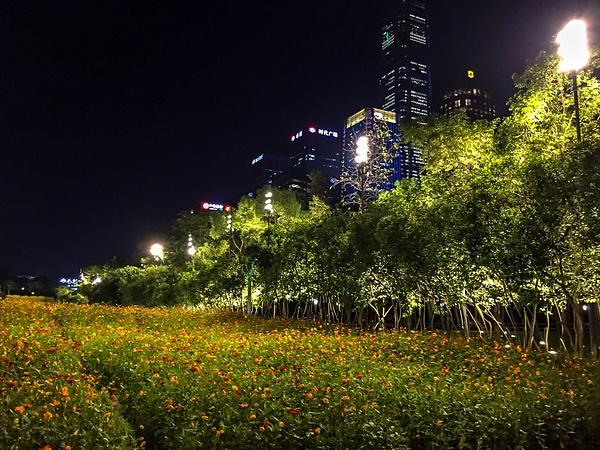 Shenzhen_2019-043 by Eugene Osminkin