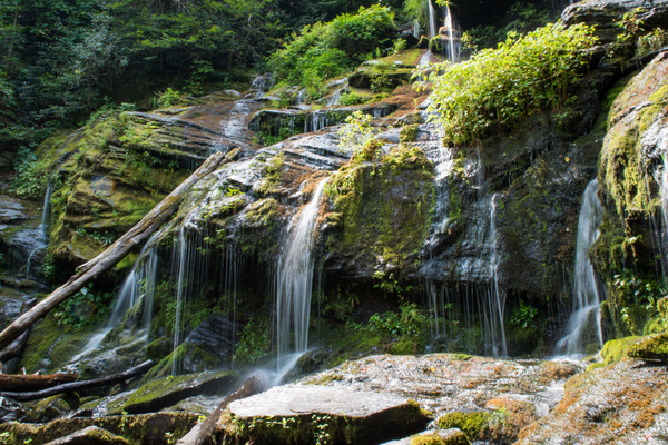 2015-08-10 180 Catawba Falls med by Ken Everly