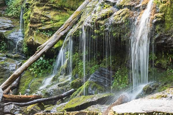 2015-08-10 184 Catawba Falls med