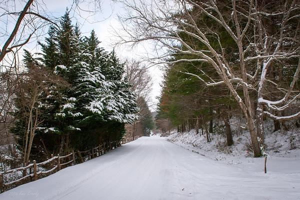 2016-01-23 034 WinterStormJonas med by Ken Everly