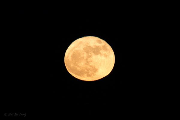 2017-12-03 080 SuperMoon by Ken Everly