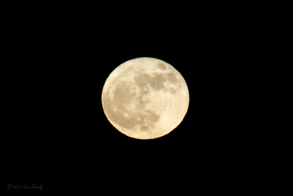 2017-12-03 103 SuperMoon by Ken Everly