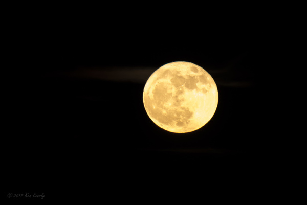 2017-12-03 117 SuperMoon by Ken Everly