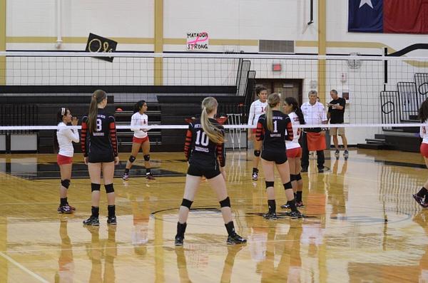 Warrior Volleyball Playoff Bi-District by DennisRedding...