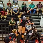 2018 Warrior Volleyball vs Carroll 08-21-18