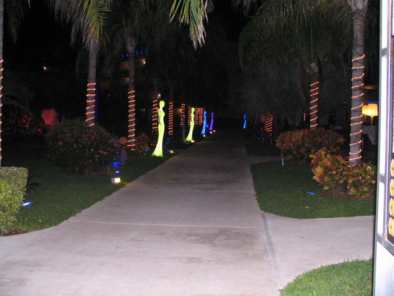 loved the night lighting