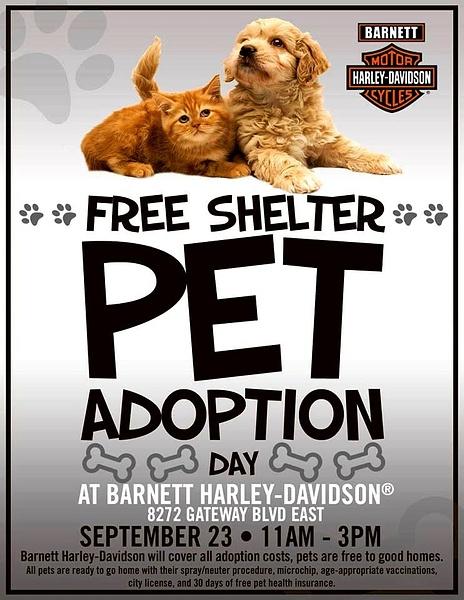 Sat. Sept. 23 / Pet Adoption