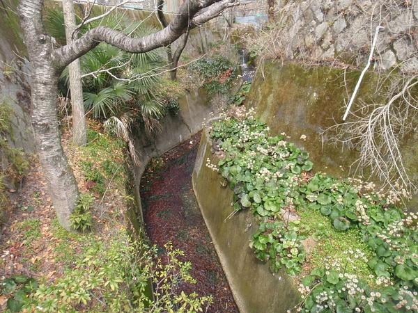 Hiroshima Mitaki shrine and hiking trail by KRoberts