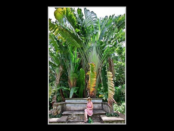 Seychelles_2013_Picks-12 by AnthonyMorley