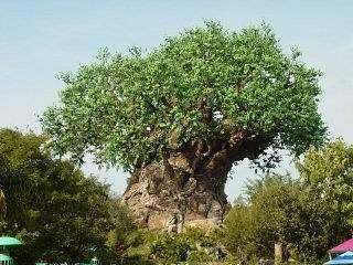 Disney_X-mas_2002_015