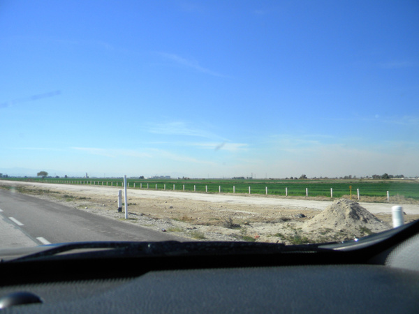 DSCN9904agriculture near Mexicali by DannySchacher