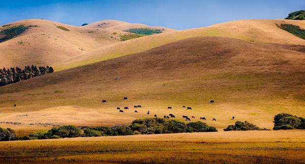 Hills by SBerzin