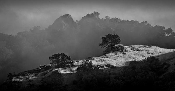 Fog 2 by SBerzin