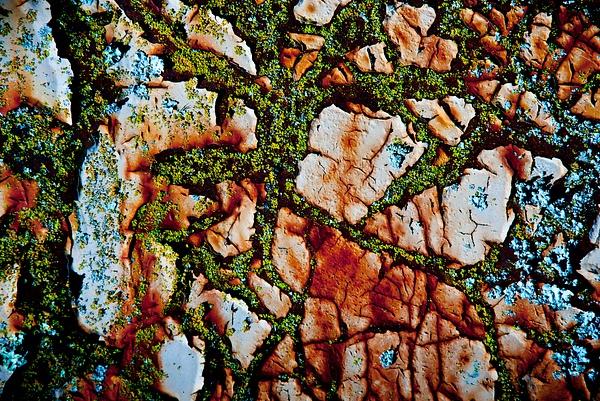 Rusty paint by SBerzin
