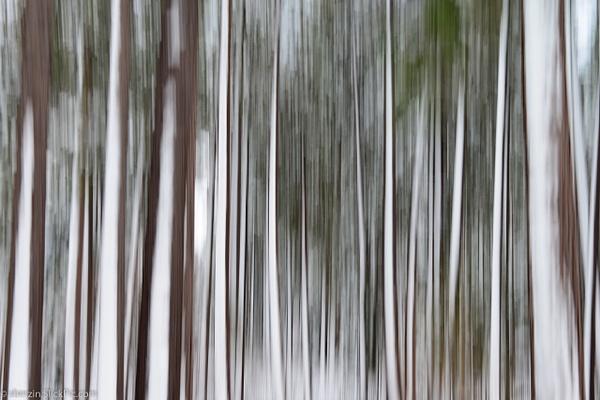 Lake Tahoe-2012-4274 by SBerzin