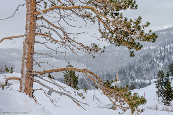 Lake Tahoe-2012-4053 by SBerzin