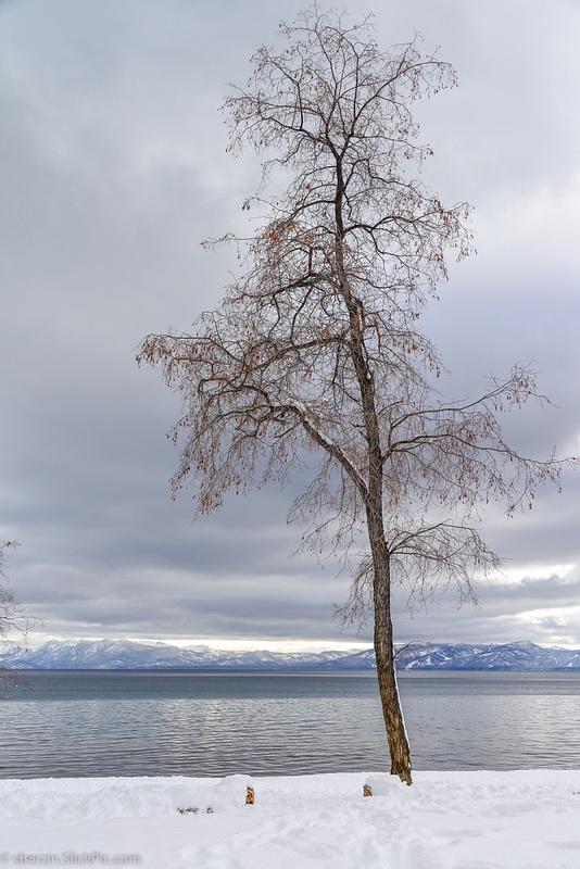 Lake Tahoe-2012-4177