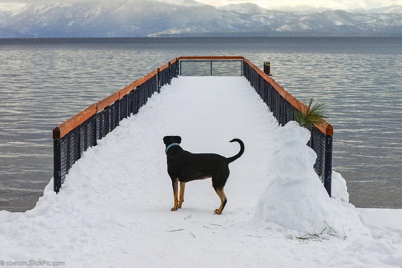 Lake Tahoe-2012-4122