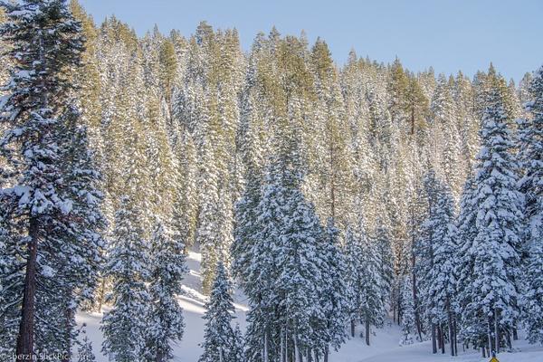 Lake Tahoe-2012-4631 by SBerzin