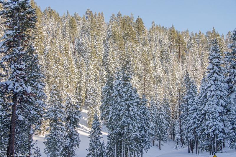 Lake Tahoe-2012-4631