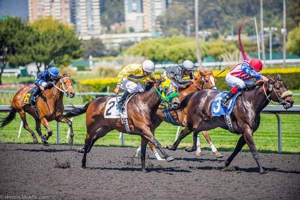 Horse Racing 10 by SBerzin