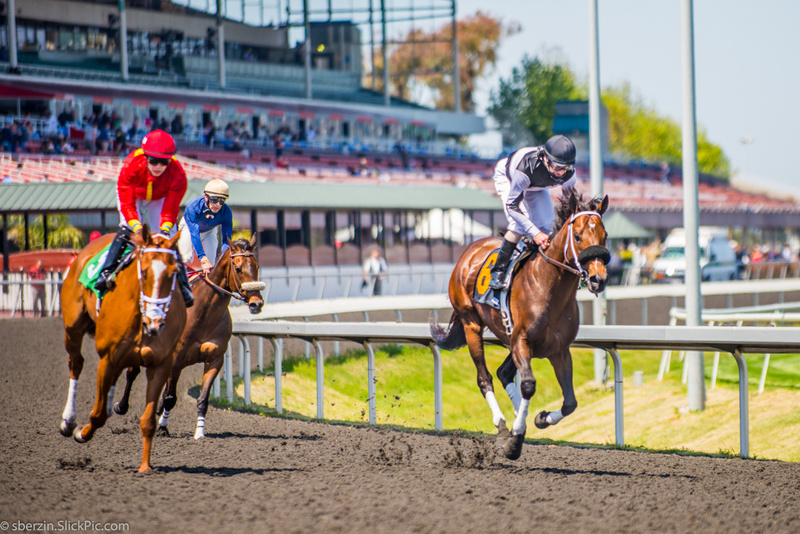 Horse Racing 8
