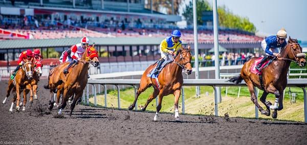 Horse Racing 6 by SBerzin