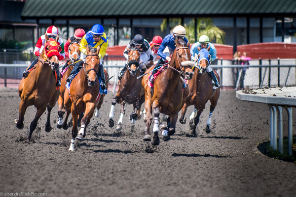 Horse Racing 5 by SBerzin