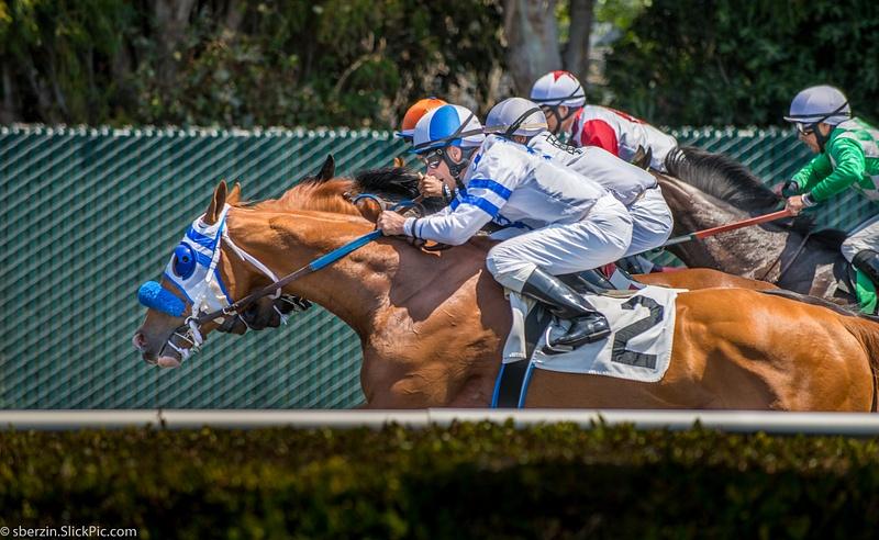 Horse Racing 12