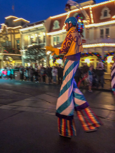 180-Disney 2017-IMG_5254 by PeterPlusMaria