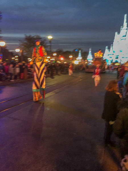 184-Disney 2017-IMG_5256 by PeterPlusMaria