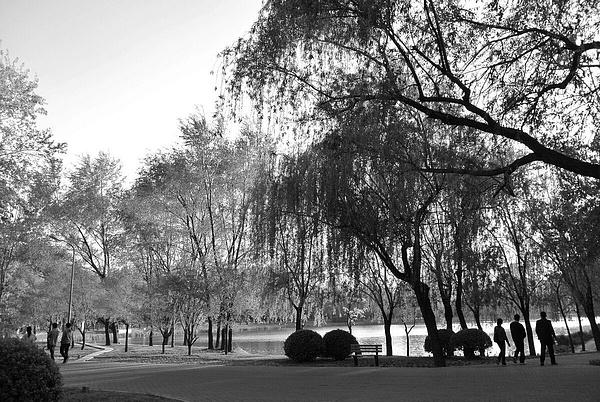 iPhone photo SP_4253057 by Zhaopian