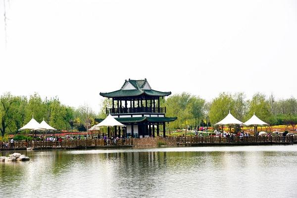 DSC_1274 by Zhaopian