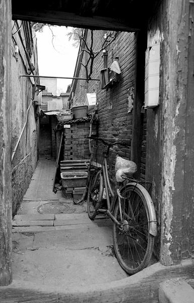 L1000226 by Zhaopian