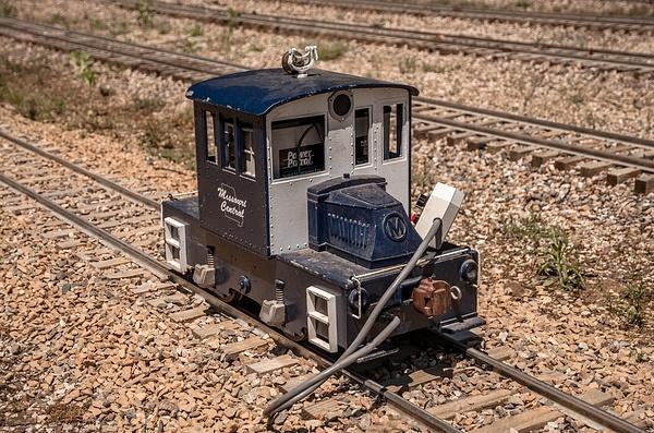 Mid Michigan Railroad Club @ Turkeyville USA by...
