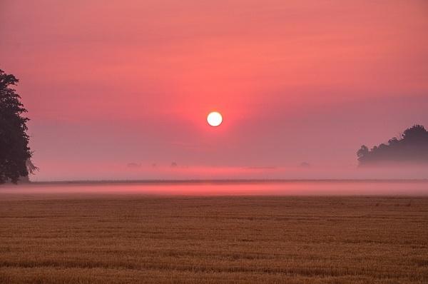 Sunrise over a freshly cut Wheat Field in Monroe County,...