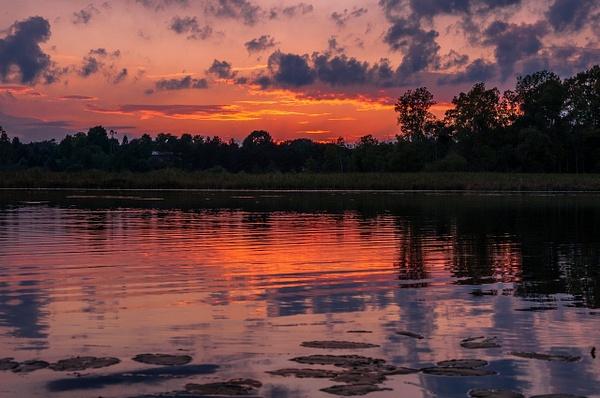 Brighton State Recreation Area - Brighton, Michigan by...
