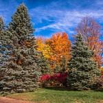Fall Colors @ Jonesville Depot & Adrian, MI.
